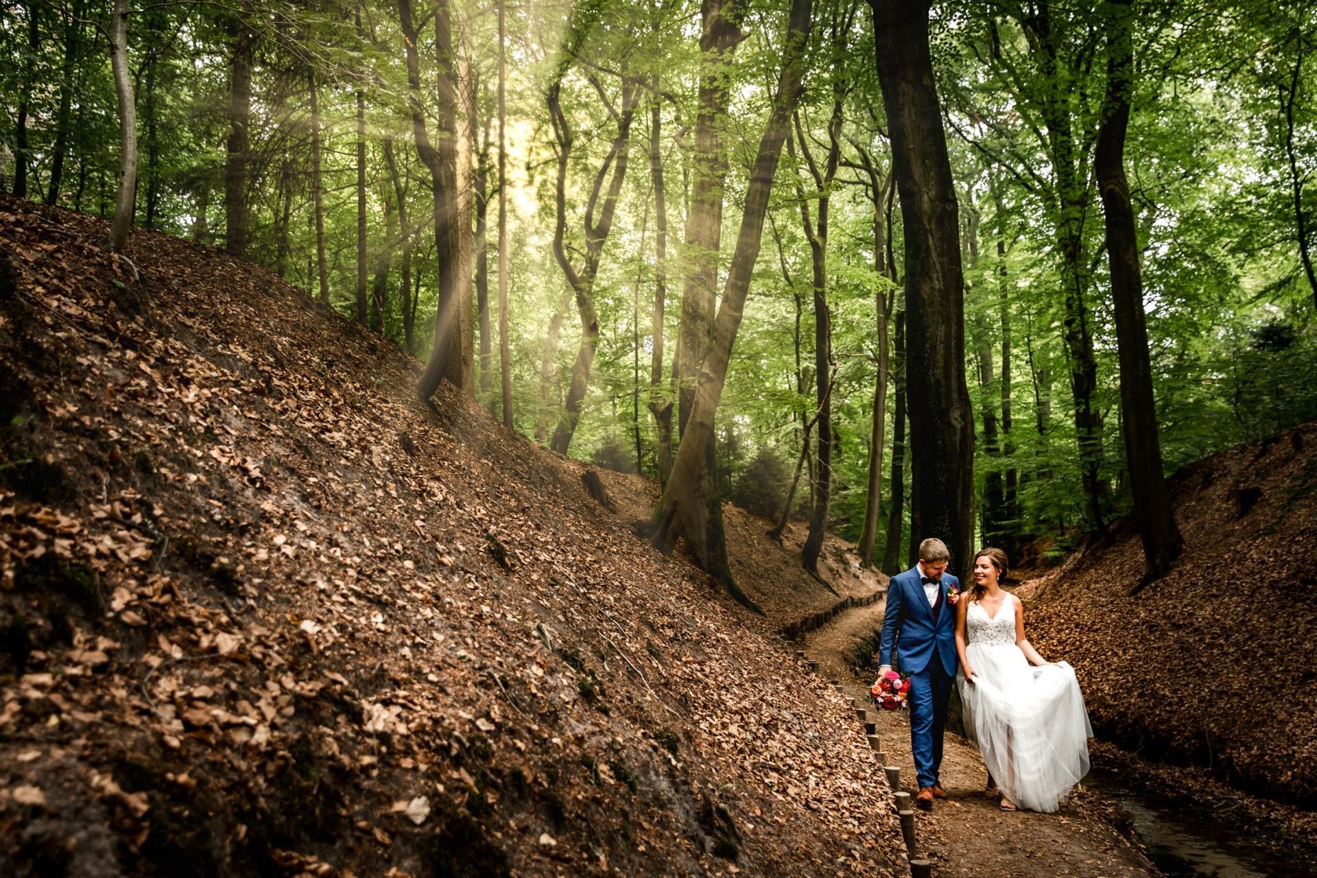 bruidsrportage de Posbank nabij Arnhem
